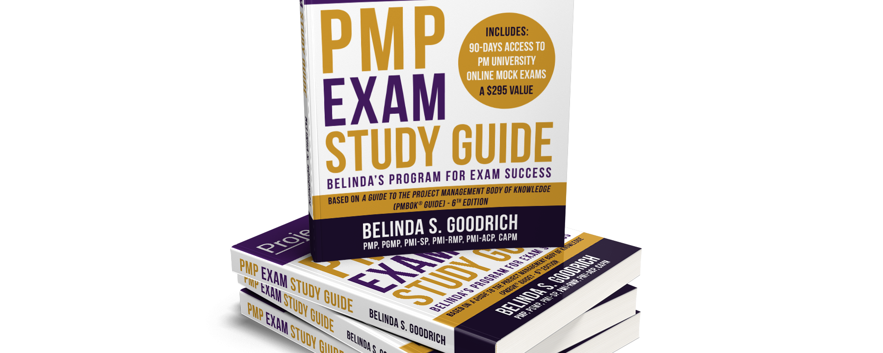 Belinda's PMP Self-Study Program